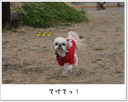 2009_0308_144253AB.jpg