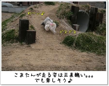 2009_0308_144526AA.jpg