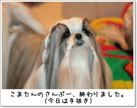 2009_0314_180857AA.jpg
