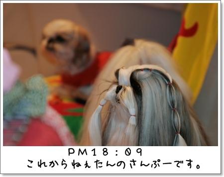 2009_0314_180952AA.jpg