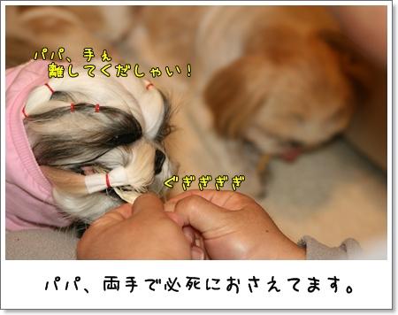 2009_0314_204756AA.jpg