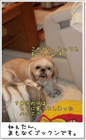 2009_0314_205250AA.jpg