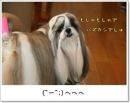 2009_0317_073704AA.jpg