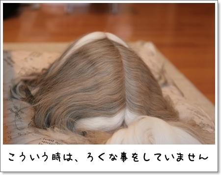 2009_0318_073444AA.jpg