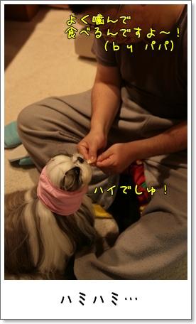 2009_0318_210423AA.jpg