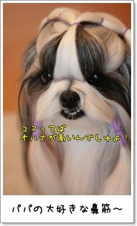 2009_0319_074124AA.jpg