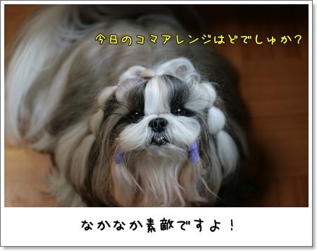 2009_0319_191013AA.jpg