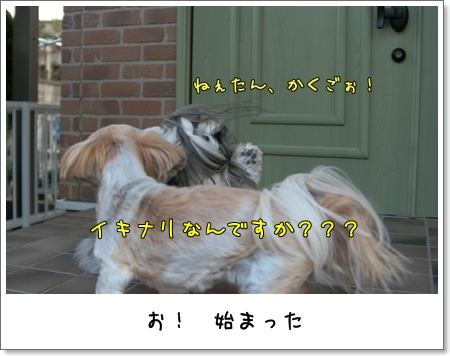 2009_0321_163501AA.jpg