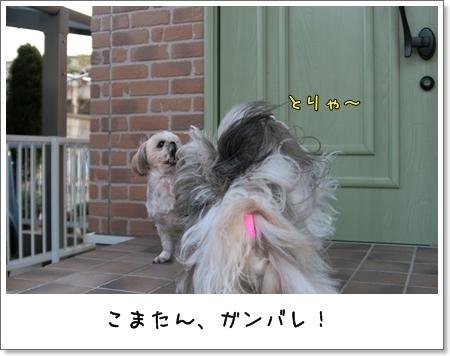 2009_0321_163504AB.jpg