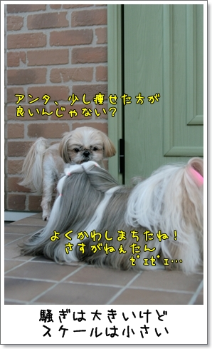 2009_0321_163510AB.jpg