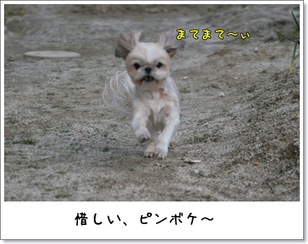 2009_0321_163939AC.jpg