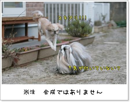 2009_0321_164250AB.jpg