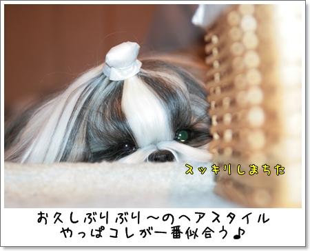 2009_0322_224334AA.jpg