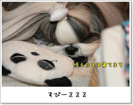 2009_0322_224403AA.jpg