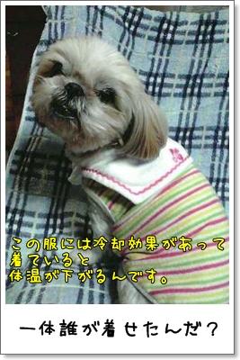 2009_0323_171403AA.jpg