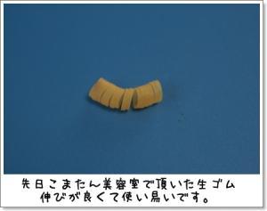 2009_0328_162243AA.jpg