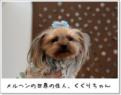 2009_0329_140714AA.jpg