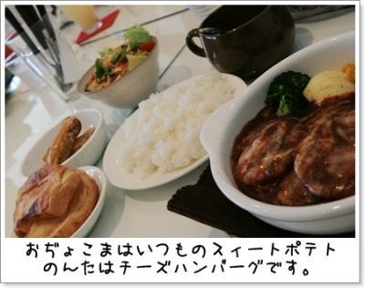 2009_0329_144133AA.jpg