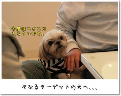 2009_0329_151628AA.jpg