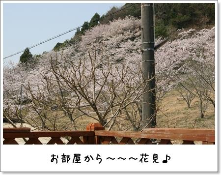 2009_0411_102840AA.jpg