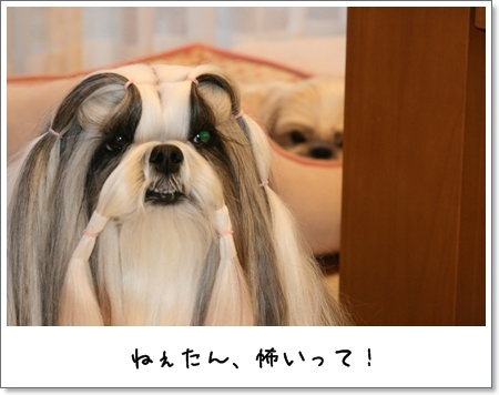2009_0411_180226AA.jpg