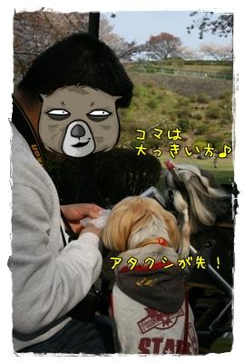 2009_0412_150446AA.jpg