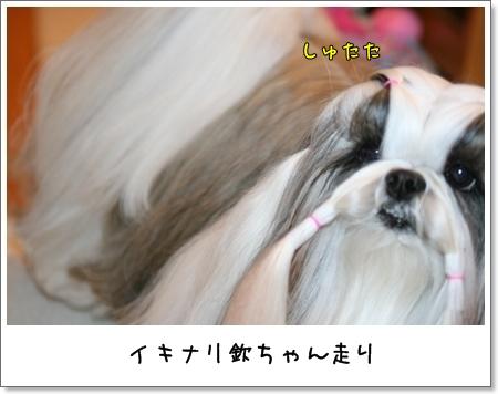 2009_0417_073401AA.jpg