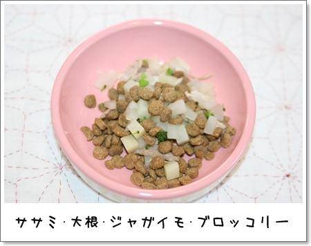 2009_0418_064719AA.jpg