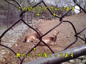 2009_0418_100500AA.jpg