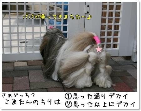 2009_0419_120556AA.jpg