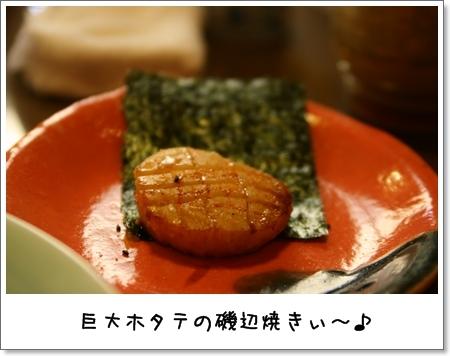 2009_0419_134018AA.jpg
