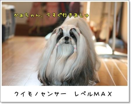 2009_0422_073443AA.jpg