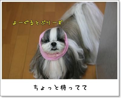 2009_0424_063003AA.jpg