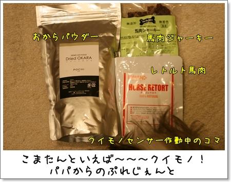 2009_0424_203705AA.jpg