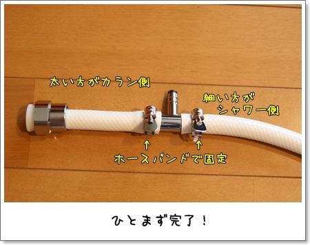 2009_0425_090638AA.jpg