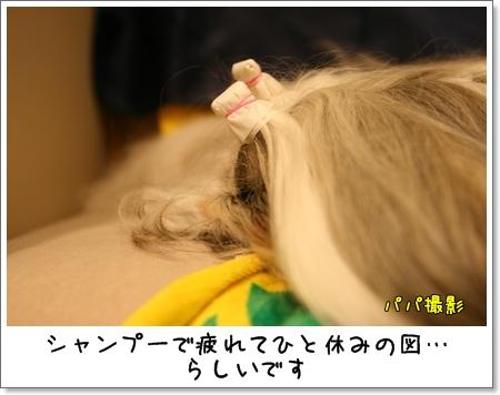 2009_0425_175044AA.jpg
