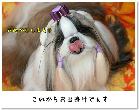 2009_0426_125827AB.jpg