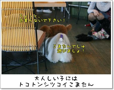 2009_0426_142306AB.jpg