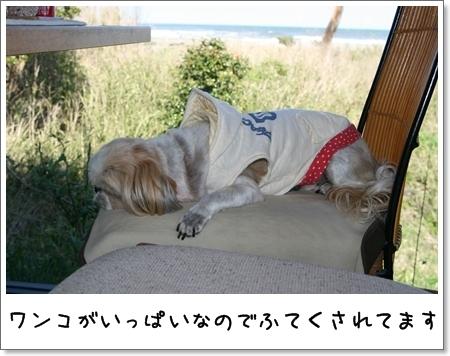 2009_0426_142445AB.jpg