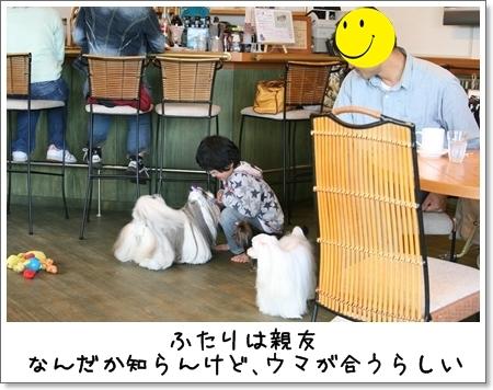 2009_0426_152959AB.jpg