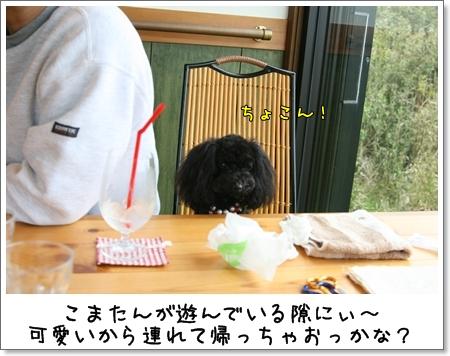 2009_0426_154309AB.jpg