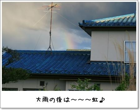 2009_0426_174921AB.jpg