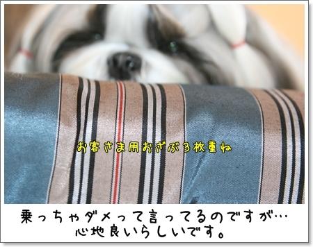 2009_0430_094743AA.jpg