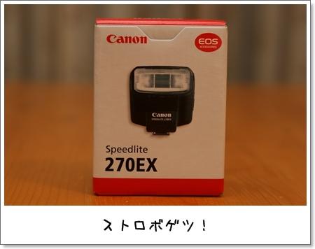2009_0430_204607AA.jpg