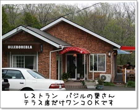 2009_0504_144108AA.jpg