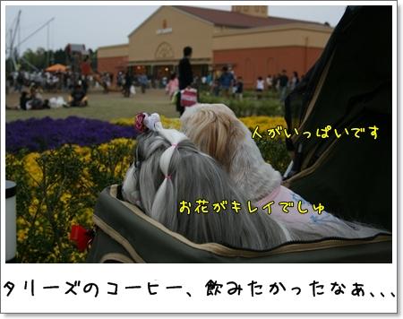 2009_0504_165656AA.jpg