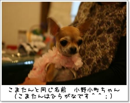 2009_0504_183623AA.jpg