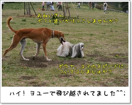 2009_0505_132922AA.jpg