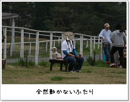 2009_0505_134520AA.jpg