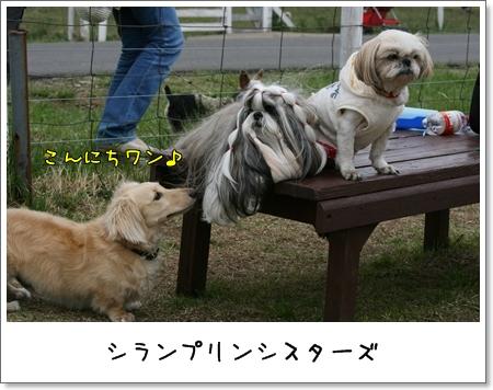 2009_0505_135101AA.jpg